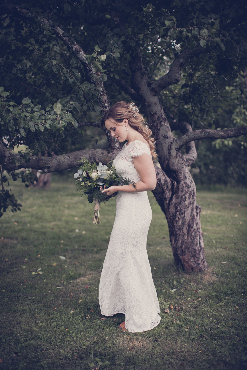 Brud i en äppelträdslund