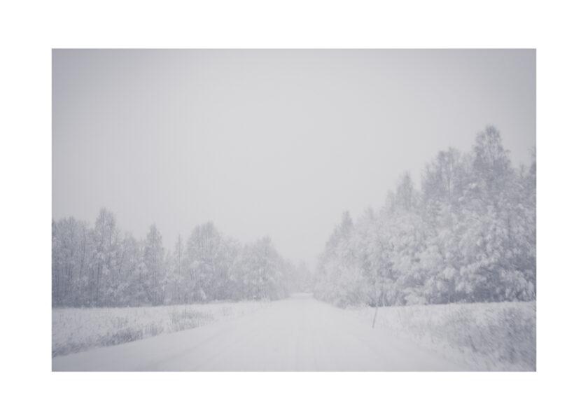 Vinterlandskap, en väg och en skog täkt av snö