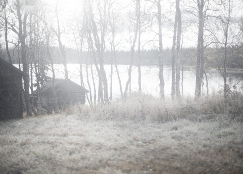 en fjällsjö och skog i dimma